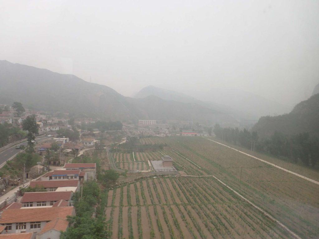 Foggy farms