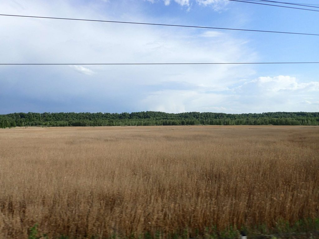 The Russian countryside alternates between Soviet cities, little wooden-housed villages, forest of varying density, and fields such as this
