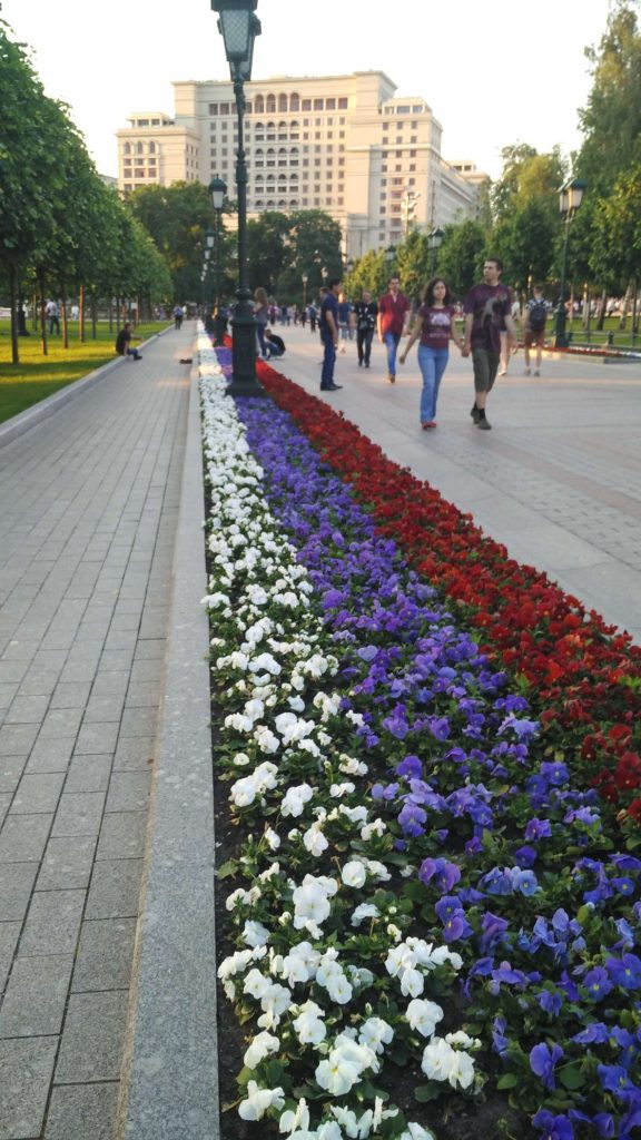 Russian flag flowers