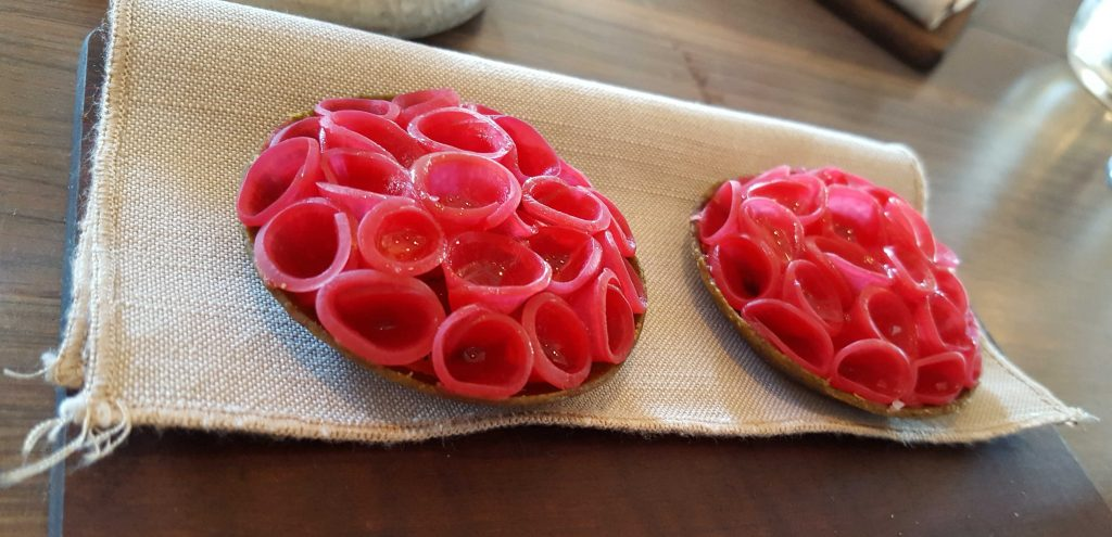 'Radish pie'. Pickled slices of radish curled into a beautiful pattern, nestled gently inside a seaweed pie shell. Fresh and crisp with a hint of salt.